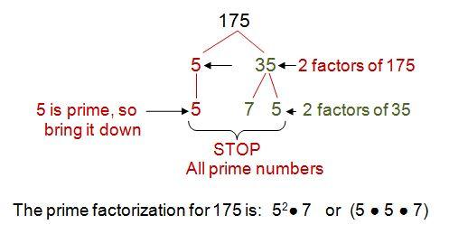 Prime Factorization for 175