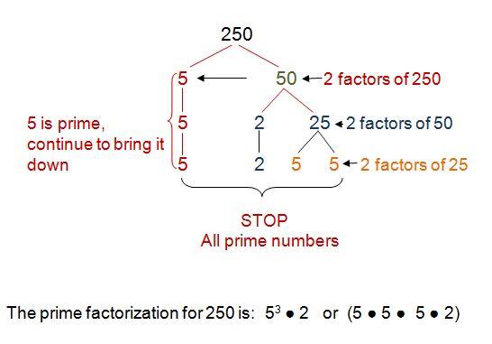 Prime factorization for 250
